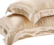 Pair of Silk Pillow Cases